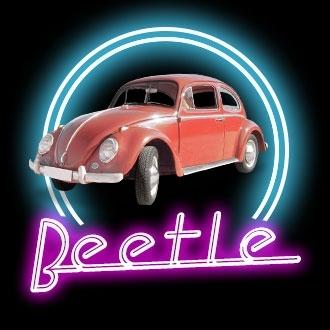 Top 40 - Beetle
