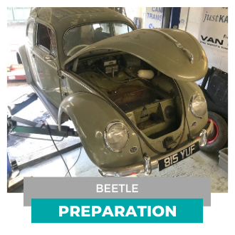 Beetle Preparation