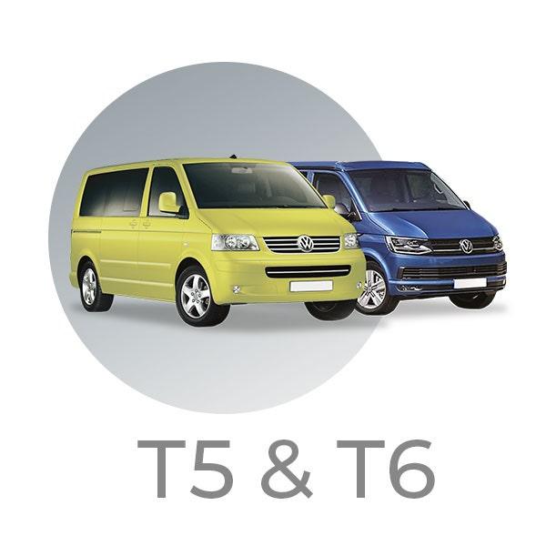 T5-T6
