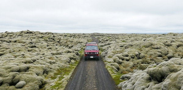 Lava Moss Field